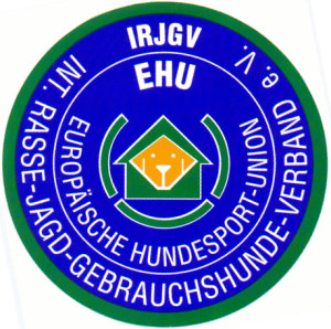 logo_irjgv